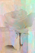 Linda Dunn Art - To the Rose by Linda Dunn