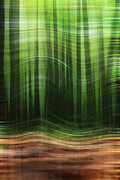 Trees Abstract Tree Lines Forest Wood Prints - To The Wind Print by K Hines