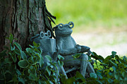 Leia Burt Art - Toad Whimsey by Leia Burt