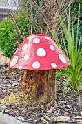 Toadstool Print by Tom Gowanlock
