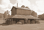 Hay Bales Digital Art Posters - Tobacco Barn in Sepia Poster by Suzanne Gaff