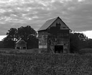 Murray Ky Prints - Tobacco Barns Print by Amber Kresge