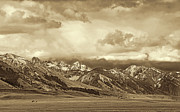 Snow Covered Mountains Prints - Tobacco Root Mountain Range Montana Sepia Print by Jennie Marie Schell