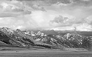 Snow-covered Landscape Photo Posters - Tobacco Root Mountains Montana Black and White Poster by Jennie Marie Schell