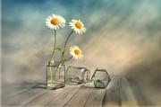 Daisy Digital Art Metal Prints - Together 2 Metal Print by Veikko Suikkanen