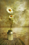Daisy Digital Art Metal Prints - Together Metal Print by Veikko Suikkanen