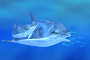 Dolphins Digital Art - Togetherness by John Edwards