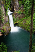 Umpqua River Prints - Toketee Falls Print by Greg Nyquist