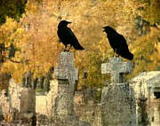 Crows Mingling Digital Art - Told You So by Gothicolors And Crows