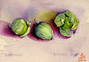 Wa Paintings - Tomatillos by Claire Bistline