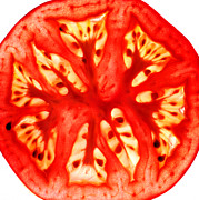 Juicy Digital Art Posters - Tomato Slice Poster by Paul Ge