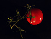 Tomato With Stem Print by Patricia Januszkiewicz