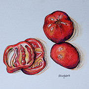 Tomato Drawings Framed Prints - Tomato1 Framed Print by Hillary Floyd