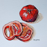 Tomato Drawings Framed Prints - Tomato2 Framed Print by Hillary Floyd