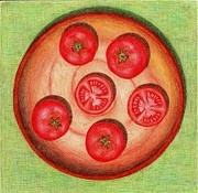 Vegetable Drawings Prints - Tomatoes Print by Alena Fotkova