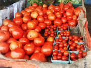 Vegetables Prints - Tomatoes For Sale Print by Susan Savad