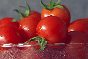 Tomatoes Prints - Tomatoes in a Bowl Print by Sharon  Talson