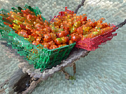 Jo Ann - Tomatoes on a wheelbarrow