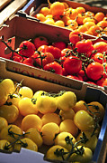Farm Stand Photo Prints - Tomatoes on the market Print by Elena Elisseeva