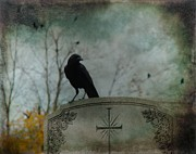 Gothicrow Posters - Tombstone Crow Poster by Gothicolors And Crows