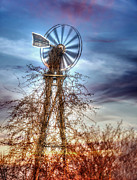 Lisa Moore - Tombstone Ranch Windmill