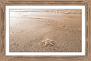 Tonal Topsail Inspiration Print by Betsy A  Cutler