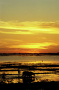 Cambodia Framed Prints - Tonle Sap Sunrise 02 Framed Print by Rick Piper Photography