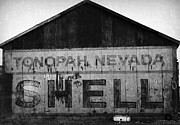 Gail Lawnicki - Tonopah Shell