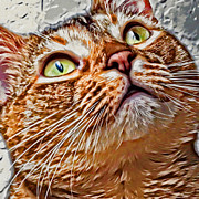 Kitten Digital Art - Too Cute For My Fur by David G Paul