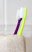 Tap Posters - Toothbrushes In A Clean White Bathroom  Poster by Fizzy Image