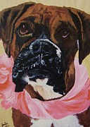 Boxer Dog Art Print Framed Prints - Tootsie Framed Print by Janice W Deetscreek