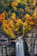 Taughannock Falls Posters - Top of the falls Poster by Mark Papke