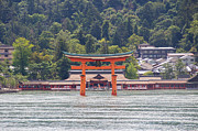Floating Torii Photos - Torii Gate of Miyajima by Laura Palmer