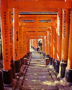 Place Of Worship Photos - Torii Gates at the Fushimi Inari Shrine by Juli Scalzi