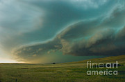 Jim Reed - Tornadic Supercell Thunderstorms