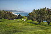 Hole Framed Prints - Torrey Pines Golf Course North 6th Hole Framed Print by Adam Romanowicz