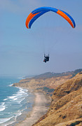 Beach Scenes Photos - Torrey Pines Paragliders by Anna Lisa Yoder