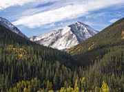 Fall Pyrography Metal Prints - Torreys Peak 2 Metal Print by Aaron Spong