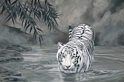 The Tiger Paintings - Torrit the Tiger by Laura Curtin