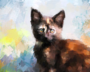 Tortoiseshell Prints - Tortoiseshell Kitten #2 Print by Jai Johnson