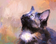 Tortoiseshell Prints - Tortoiseshell Kitten #3 Print by Jai Johnson