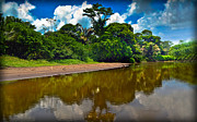Tortuguero River Canals Print by Gary Keesler