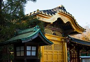 Natural Focal Point Photography - Toshogu Shrine in Ueno...