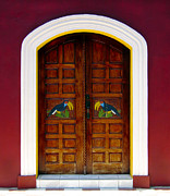 Toucan Framed Prints - Toucan Door Framed Print by Kurt Van Wagner