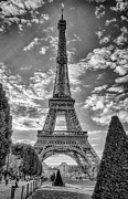 Oleg Koryagin - Tour Eiffel black and...