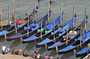 Lined Up Framed Prints - Tourists and Row of empty moored gondolas Framed Print by Sami Sarkis