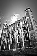 Facade Prints - Tower of London Print by Elena Elisseeva