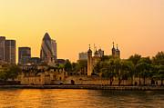Svetlana Sewell - Tower of London