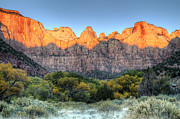 Colors Of Autumn Prints - Towers Of The Virgin Sunrise In Zion National Park Print by Pierre Leclerc