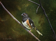 Layered Framed Prints - Towhee Waiting For Sunrise Framed Print by J Larry Walker